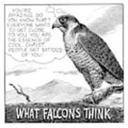What Falcons Think Art Print