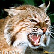 Wildcats Mascot 4 Art Print