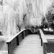 Willow Tree Over The Bridge Art Print