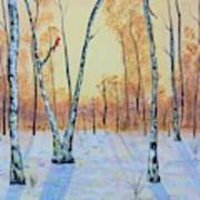 Winter Birches-cardinal Left Art Print