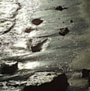 Winter Sun On The Tide Art Print