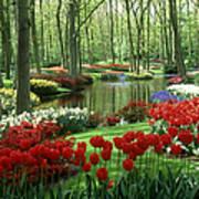Woods And Stream, Keukenhof Gardens Art Print