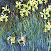 Yellow Irises - Digital Remastered Edition Art Print