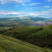 Yellow Stone National Park Where Bears Live  Art Print