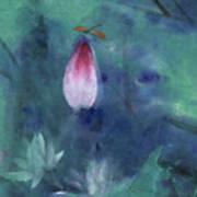 Lotus and Dragonfly Art Print