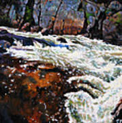 Rushing Waters Colorado Art Print