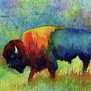 American Buffalo III Art Print