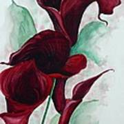 Black Callas Art Print