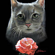 Cleo And The Rose Art Print
