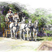 Coaching In Acadia- Carriage Driving Four In Hand Art Print