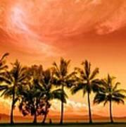 Coconut Grove Art Print