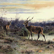 Deers In The Forest At Fontainebleau - Digital Remastered Edition Art Print