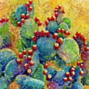 Desert Gems Art Print
