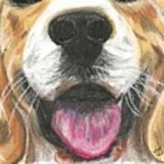 Dog Face Art Print