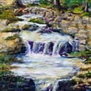 Fern Dell Creek Noon Art Print