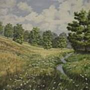 Field And Stream Art Print
