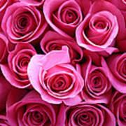 Grandma Roses Art Print
