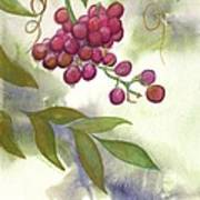 Grapes Divine Art Print