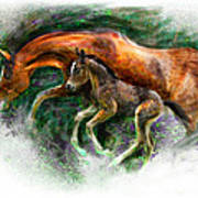 In Harmony Three Days Old Arabian Mare Running Foal Art Print