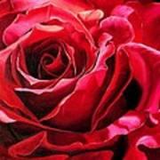 Labelle Rose       Art Print