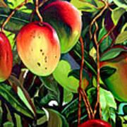Mangos Art Print