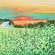 Neola Corn Art Print