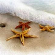 Three Starfish Treasures Art Print