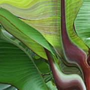 Plantflow Art Print