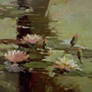 Pond Blossoms Art Print