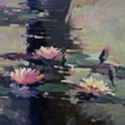Pond Lilies Art Print