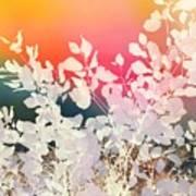 Rainbow sky leafy abstract Art Print