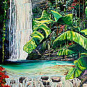 Rainforest Falls Trinidad.. Art Print