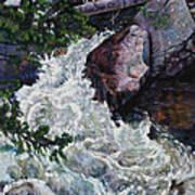 Rushing Stream Colorado Art Print