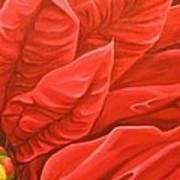 Scarlet Nights Art Print