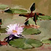 Tomorrow's Blooms- Water Lilies Art Print