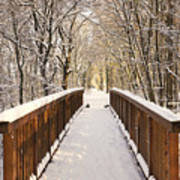 Towards The Winter Wonderland Art Print