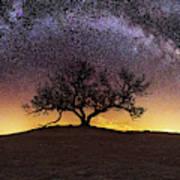 Tree of Wisdom Art Print