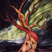 Tree with Northern Lights Art Print