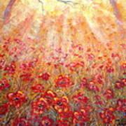 Warm Sun Rays Art Print