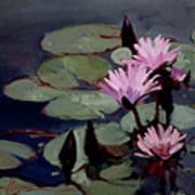 Water Trio - Water Lilies Art Print