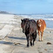 Wild Horses On The Beach Photograph By Fon Denton