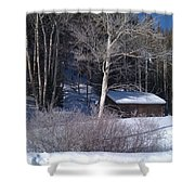 Rustic Cabin Shower Curtain