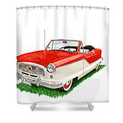 1961 Metropolitian Shower Curtain