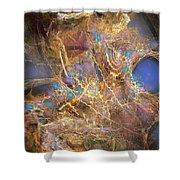 Abstraction 251-03-13 Marucii Shower Curtain