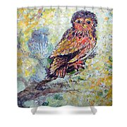 Acrylic Painting Fuzzy Yellow Owl  Shower Curtain