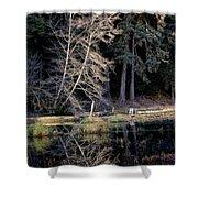 Alder Tree Reflection In Pond Shower Curtain