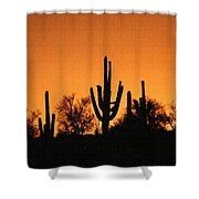 Arizona Sagurao Sunset Shower Curtain