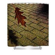 Autumnal Equinox Shower Curtain