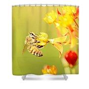 Bee On Milkweed Shower Curtain