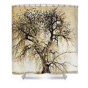 Bird Tree Fine Art  Mono Tone And Textured Shower Curtain